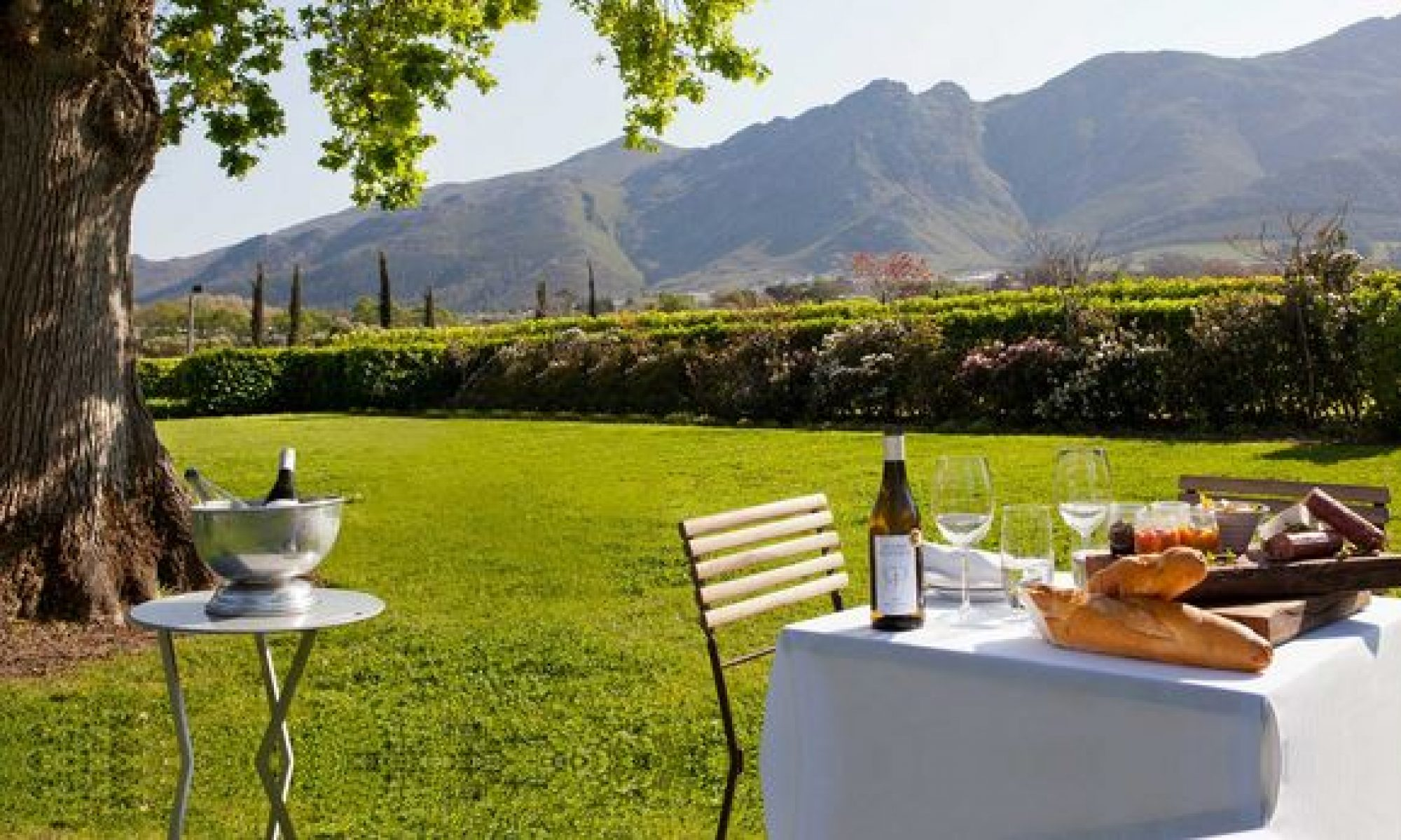 Wine Tours Cape